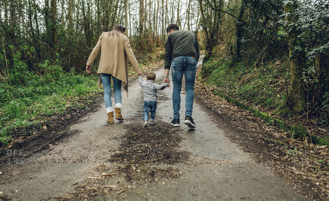 Back view of family walking in forest in autumn