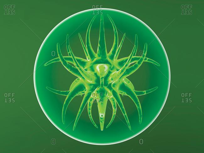 Generic virus- 3D Rendering - Offset