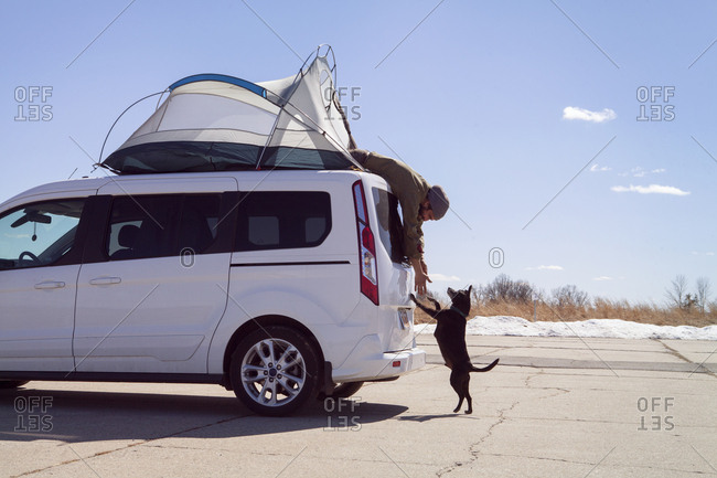 Side view of man reaching dog rearing up while sitting in tent on car roof at campsite