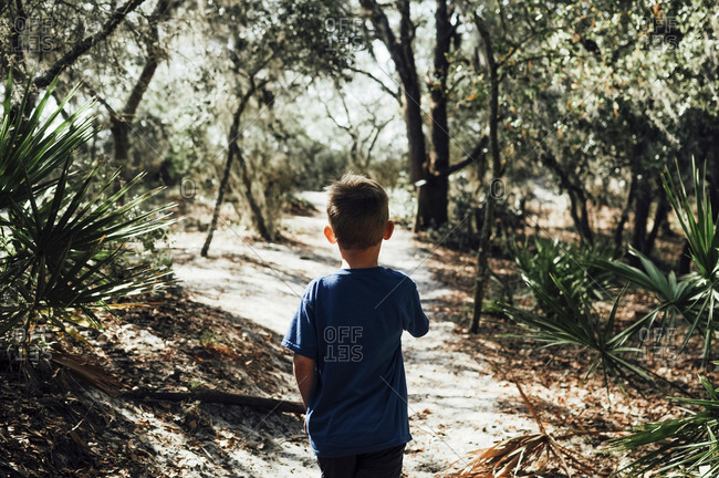 Rear view of boy standing on footpath at forest