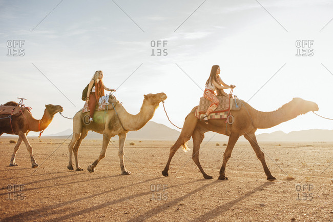 Female friends riding on camels at desert against sky during sunny day