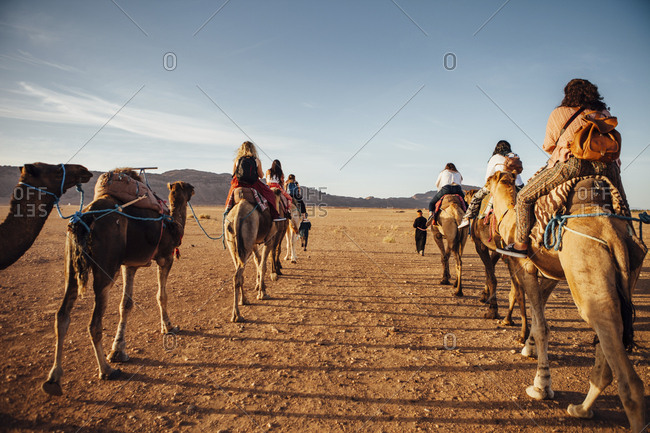 Rear view of tourists riding on camels at desert against sky during sunny day