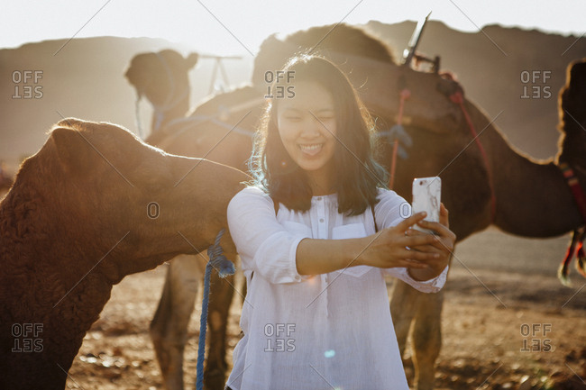 Smiling woman taking selfie while standing by camels at desert during sunny day