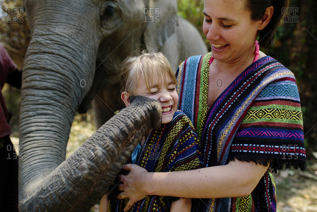 Elephant touching girl with trunk standing by mother