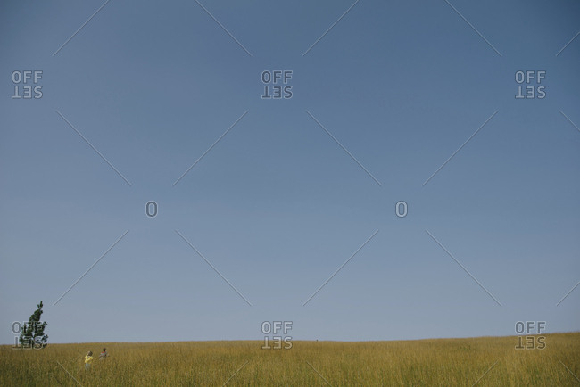 Distant view of siblings on grassy field against blue sky