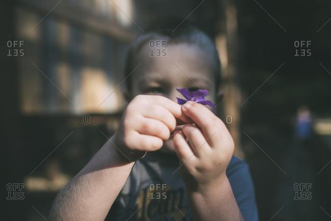 Boy holding purple flower outdoors
