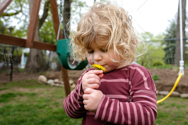 Girl kissing dandelion at yard