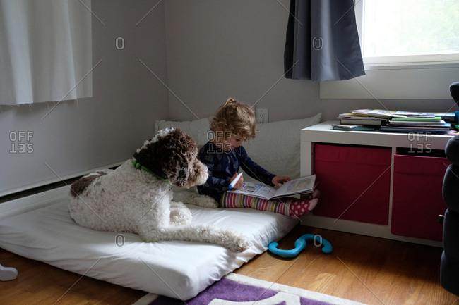Girl studying while sitting by dog on mattress at home