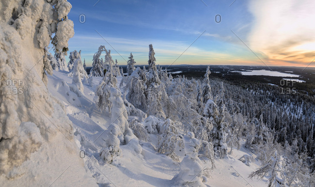 Panorama of snowy landscape and woods framed by blue sky and sun Ruka Kuusamo Ostrobothnia region Lapland Finland Europe
