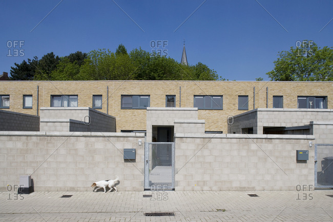 Exterior of contemporary brick building with dog walking in front of wall