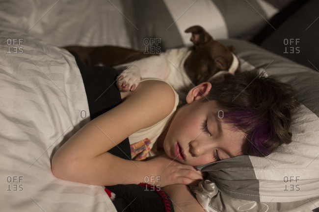 Dog cuddling in bed with a young boy