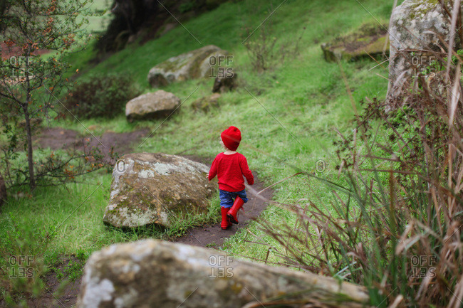 Rear view of toddler boy in red walking a trail