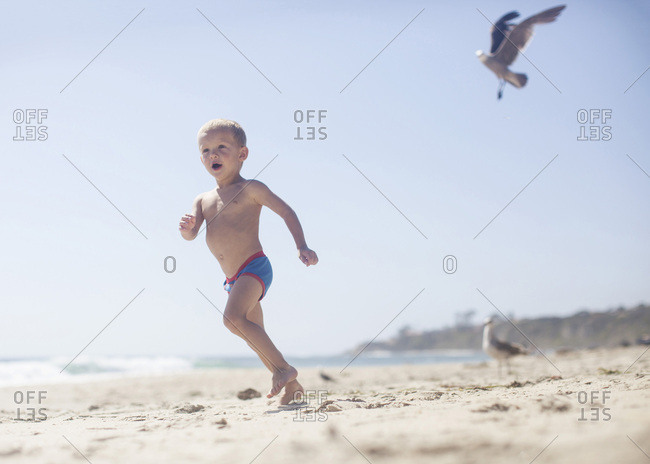 Toddler boy running at the beach with birds