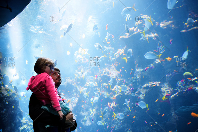 Father holding daughter at an aquarium