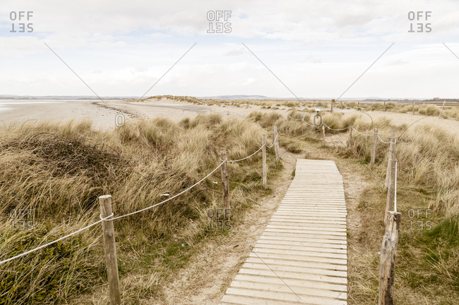 Path through coastal sand dunes
