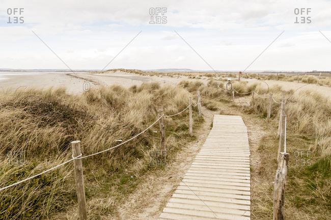 Path through coastal sand dunes