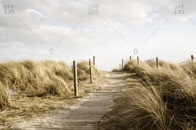 A boardwalk through sandy dunes