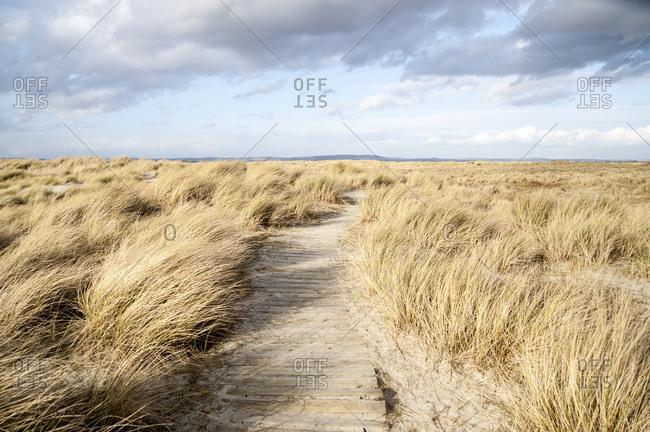 Wood walkway through sand coast