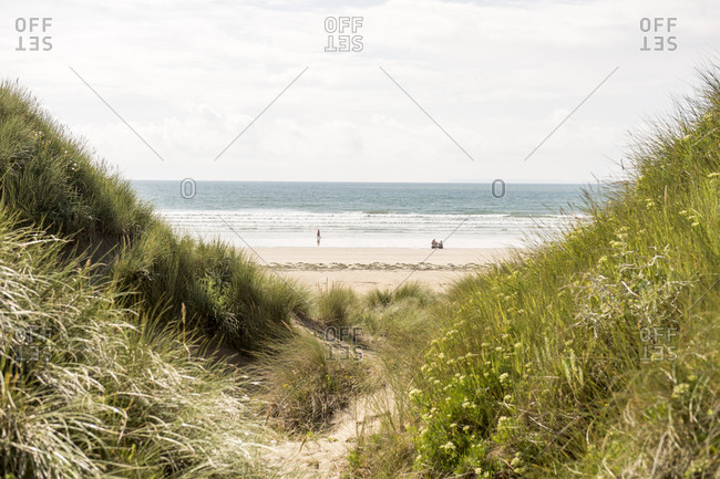 Beaches and grass dunes at sea