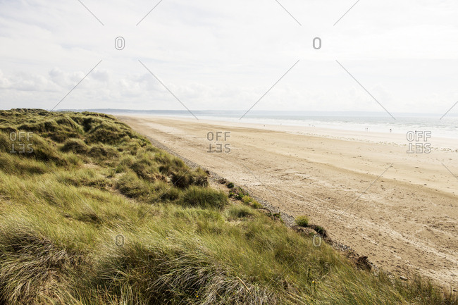 Beaches and grass dunes by sea