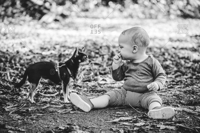 Baby boy eating next to his dog