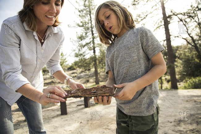 Mother and son looking at insect on tree bark in forest during camping
