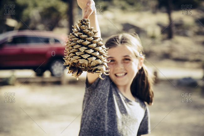 Happy girl holding pine cone in forest at campsite during sunny day