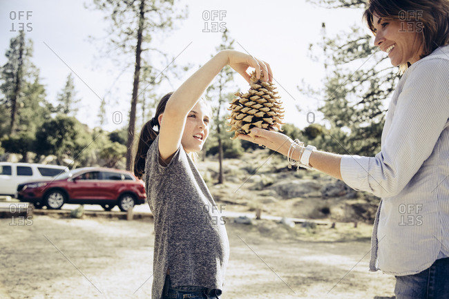 Mother and daughter looking at pine cone while standing in forest during summer vacation
