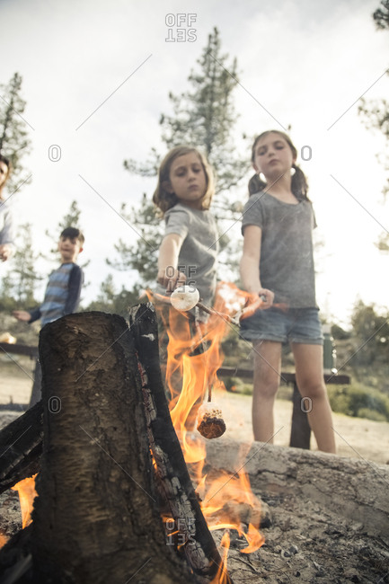 Brother and sister roasting marshmallows over campfire in forest