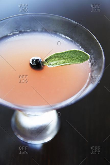 pink cocktail with sage garnish