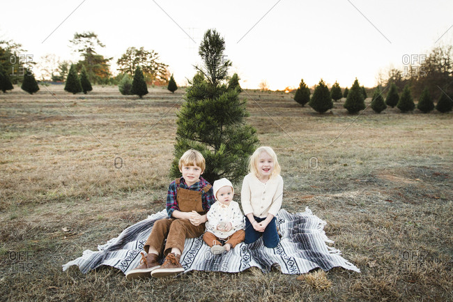 Kids sitting in front of pine tree on a farm