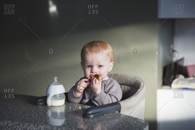 Baby sitting at booster seat on kitchen counter eating snack