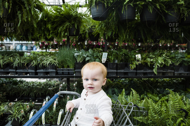 Baby girl sitting in shopping cart at garden store