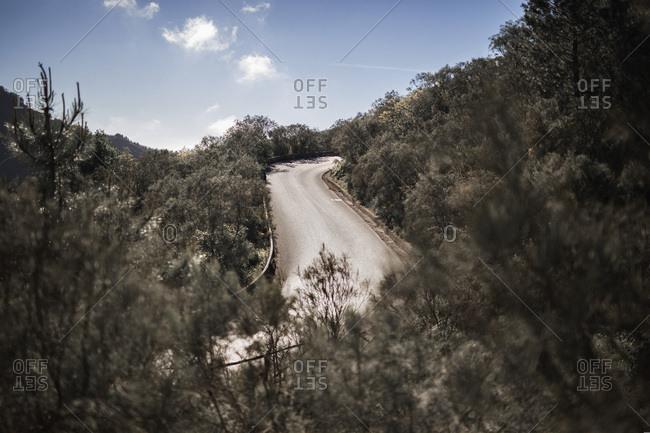 A road on the Vesuvius Mount