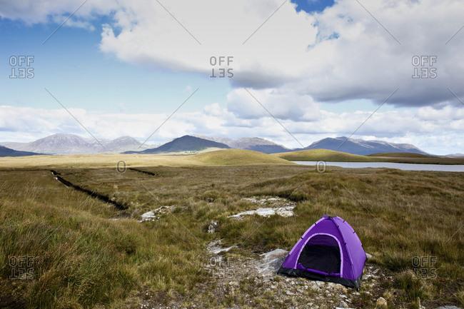 Purple Tent open in barren landscape