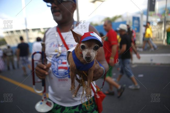 July 1, 2014 - Salvador, Brazil: Man holding Chihuahua dog in soccer fan gear