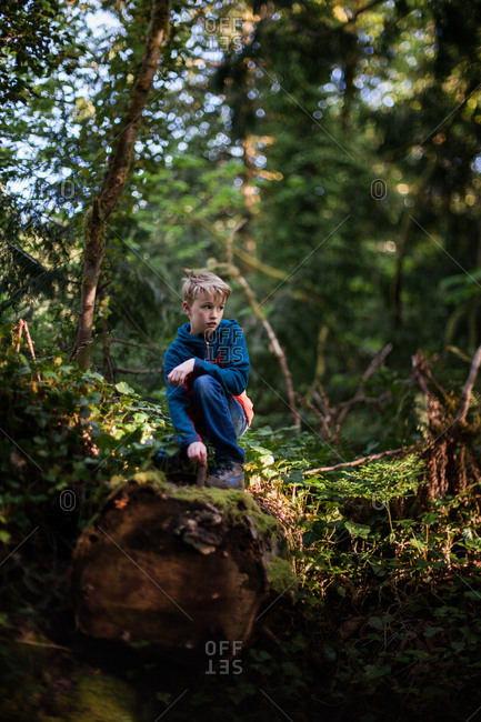 Boy exploring a forest