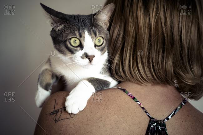 Cat resting on woman's shoulder