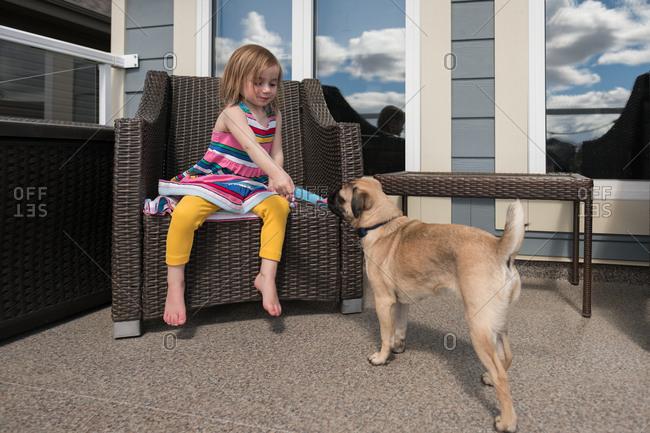 Little girl feeding popsicle to pug dog