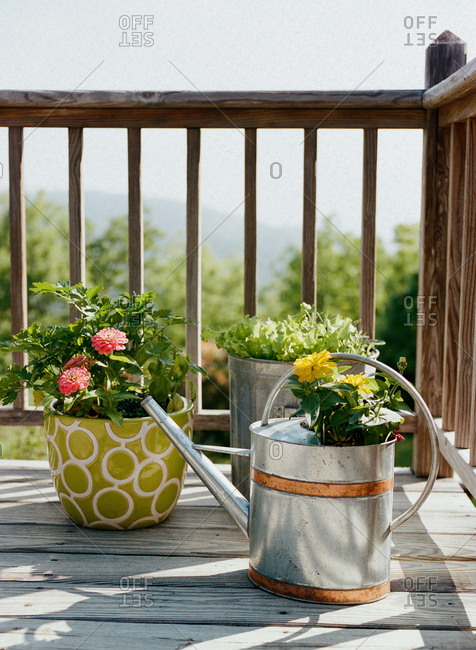 Watering can and potted plants on corner of wooden deck of mountain cabin