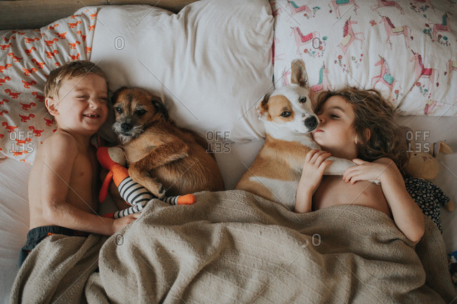 Kids smiling in bed with dogs