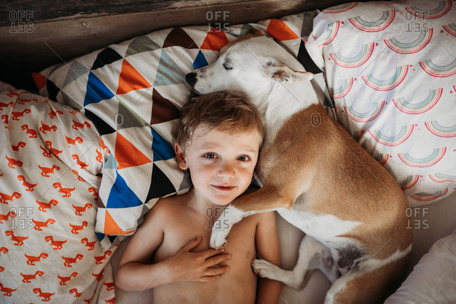 Boy lying in a bed with dog