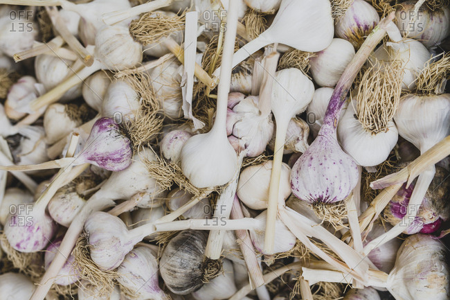 Garlic for sale at a farmer's market