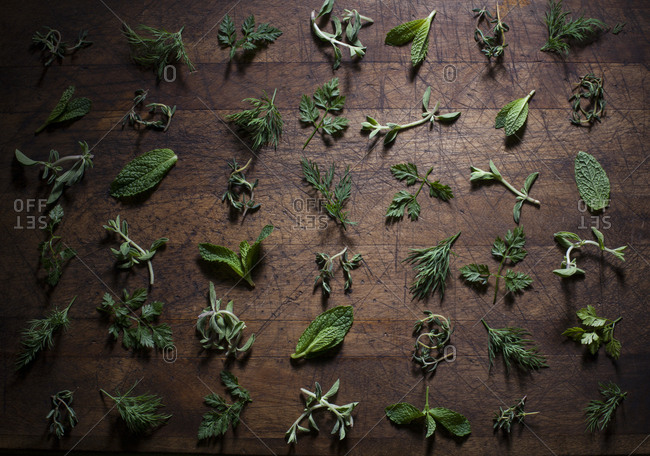 Variety of green herbs on rustic wooden background