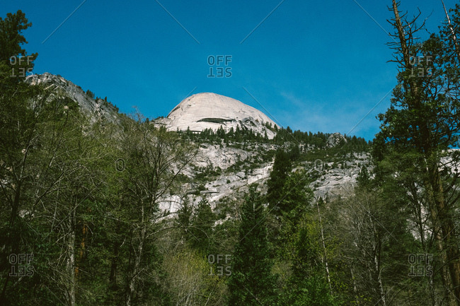 Yosemite landscape with greenery and mountains