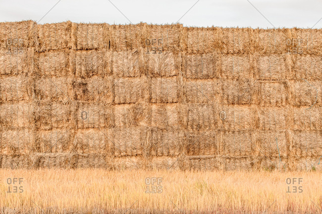 Wall of stacked hay bales