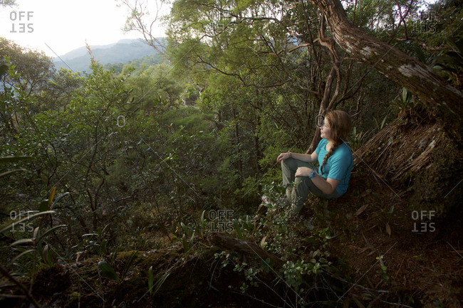 A girl watches the sunrise from Mossy Rock, a high point on the ridge in Gunung Palung National Park.