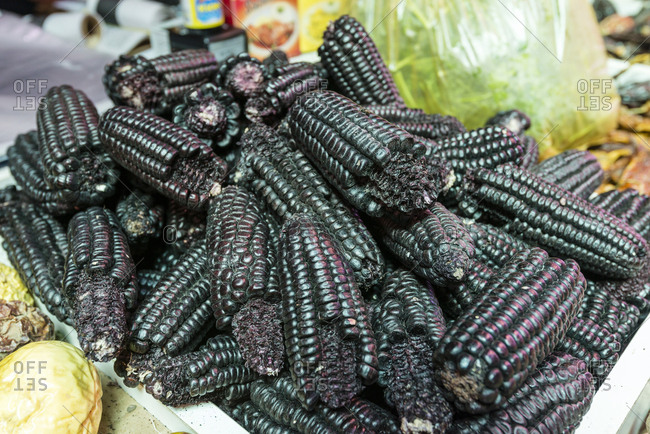 Black Aztec Sweet Corn for sale in a vegetable market.