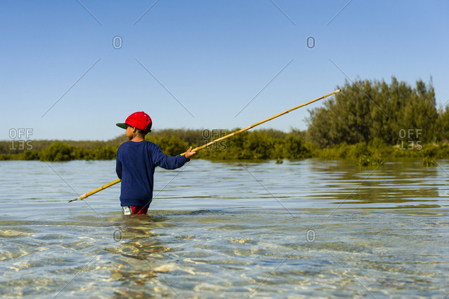 An Aboriginal boy uses a long barbed spear to hunt for stingrays in the shallows of a lagoon.