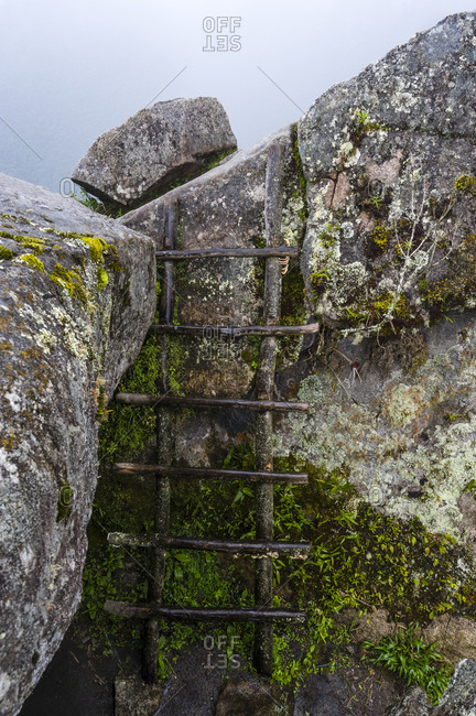 A timber ladder made of tree branches on the summit of Huayna Picchu in the Andes.